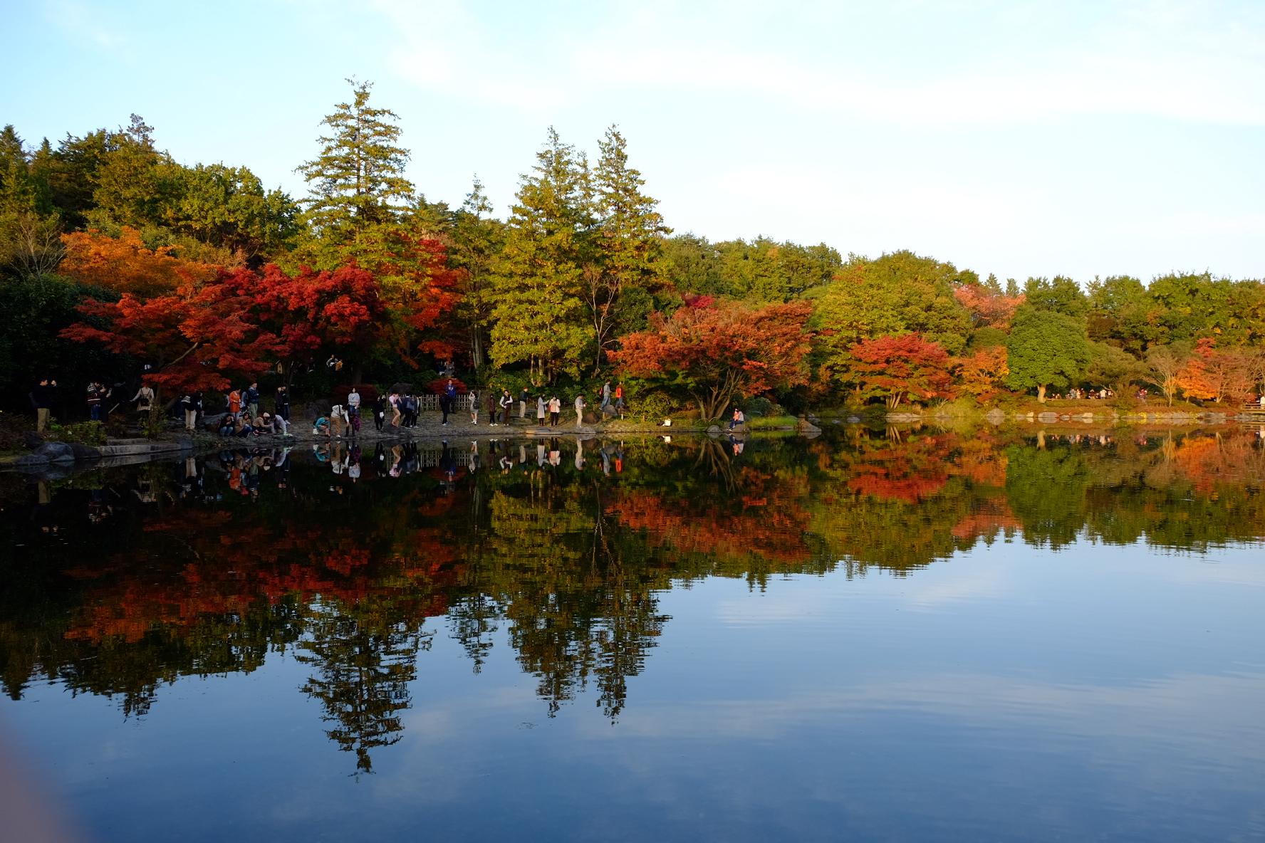 国営昭和記念公園‐日本庭園