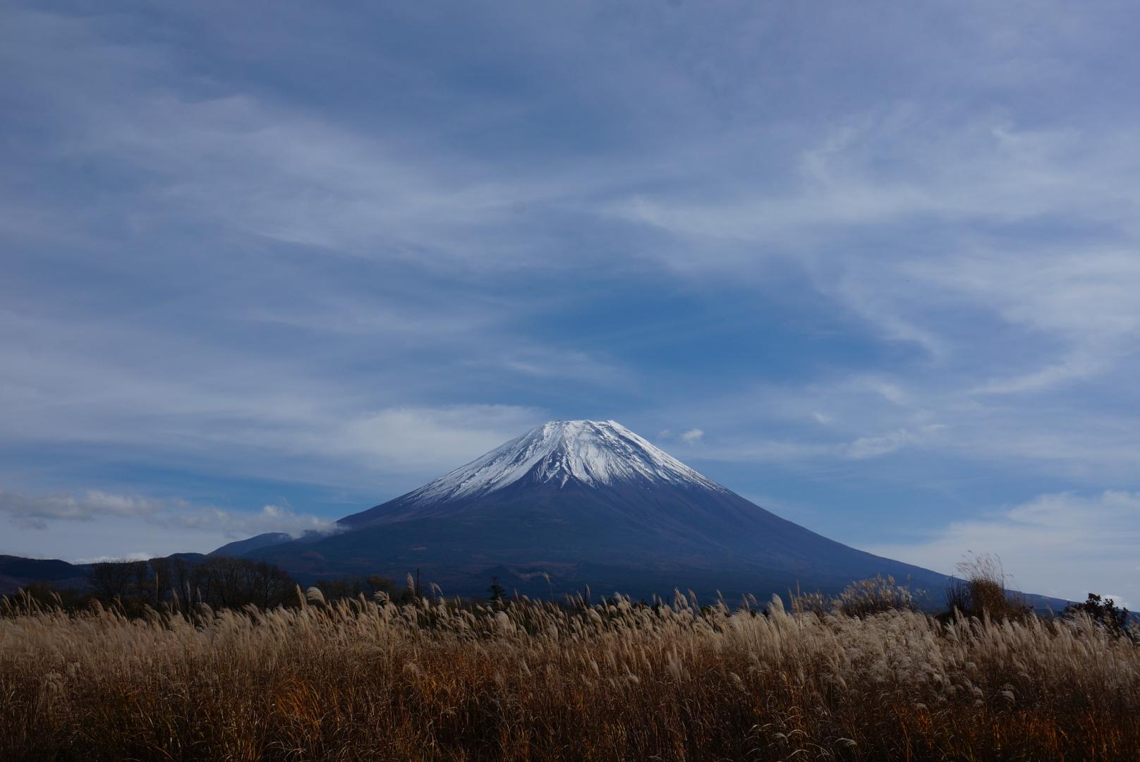 富士山‐ススキ