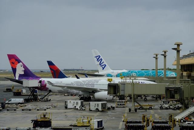 ANAのエアバスA380「FLYING HONE(フライング・ホヌ) 」
