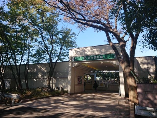 東京競馬場南口