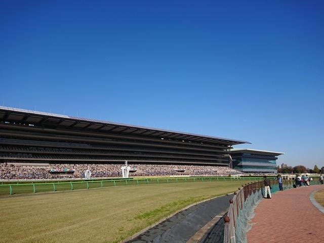 東京競馬場メインスタンド 巨大なメインスタンド