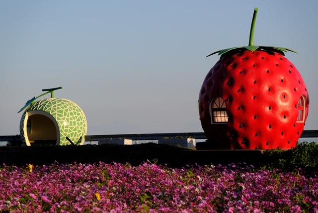 佐賀県:フルーツバス停(メロン&イチゴ)